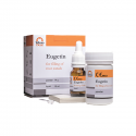 Material obturatii radiculare Eugetin 14 g + 10 ml